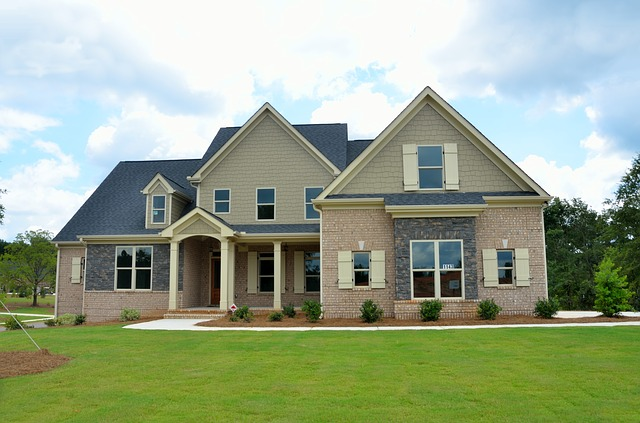 nový domov