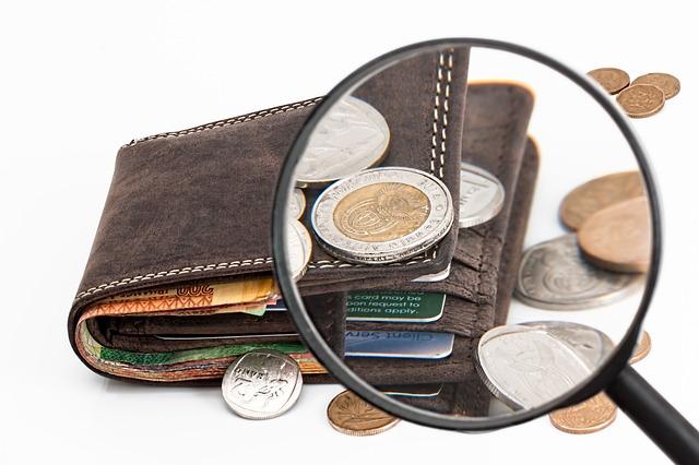 peněženka s platebními kartami